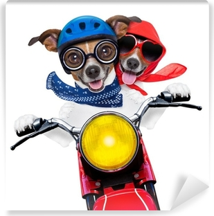 motorbike couple of dogs Vinyl Wall Mural