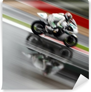 Motorcycle racing Vinyl Wall Mural