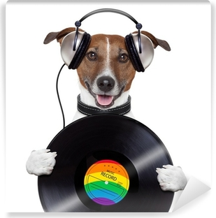 music headphone vinyl record dog Vinyl Wall Mural