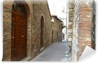 Narrow Alley With Old Buildings In Italian City Vinyl Wall Mural