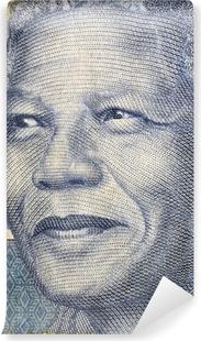 Nelson Mandela Vinyl Wall Mural