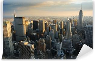 NEW YORK CITY SKYLINE Vinyl Wall Mural