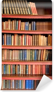 Old bookshelf with rows of books in ancient library Vinyl Wall Mural