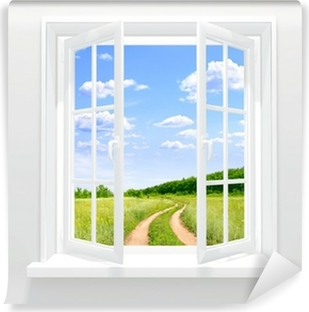 Open window Vinyl Wall Mural