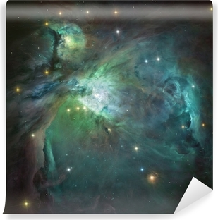 Orion nebula in deep space. Element of image furnished by NASA. Vinyl Wall Mural