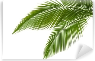 Palm leaves Vinyl Wall Mural