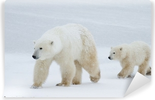 Polar bear mom and cub walking on the ice Vinyl Wall Mural