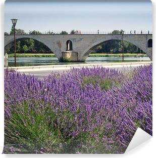 Pont d'Avignon Vinyl Wall Mural