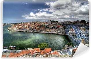 Porto, Portugal. Vinyl Wall Mural