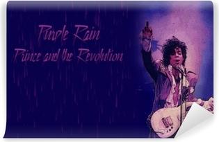 Prince Vinyl Wall Mural