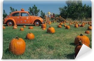 pumpkins and a volkswagen Vinyl Wall Mural