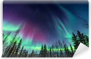 Purple and green Northern Lights Vinyl Wall Mural