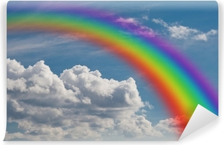 rainbow in the clouds. Vinyl Wall Mural