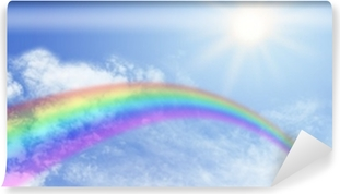 Rainbow Website Banner Header Vinyl Wall Mural