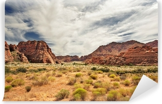 Red Canyon at Snow Canyon, Utah Vinyl Wall Mural