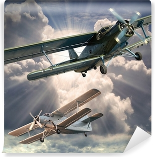 Retro style picture of the biplanes. Transportation theme. Vinyl Wall Mural