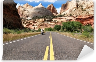 Riding Capitol Reef Vinyl Wall Mural