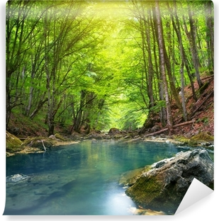 River in mountain forest. Vinyl Wall Mural