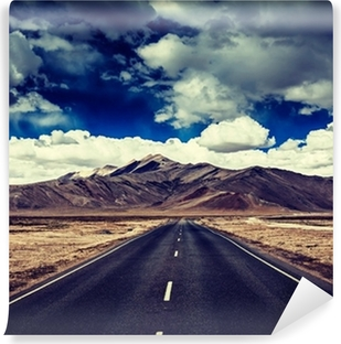Road on plains in Himalayas with mountains Vinyl Wall Mural