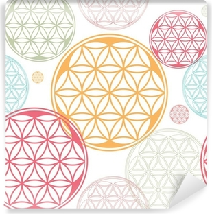 sacred geometry flower of life seed pattern Vinyl Wall Mural
