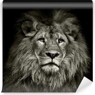 Lion portrait on savanna landscape photo Hole in wall sticker wall mural23091788