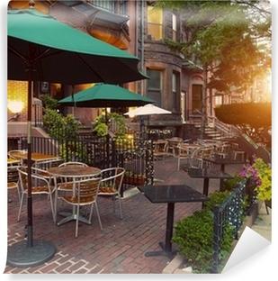 Scenic Cafe Terraces in Newbury Street, Boston, USA Vinyl Wall Mural