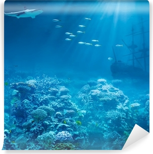 Sea or ocean underwater with shark and sunk treasures ship Vinyl Wall Mural