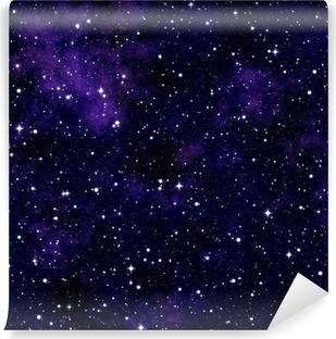 Seamless texture simulating the night sky Vinyl Wall Mural