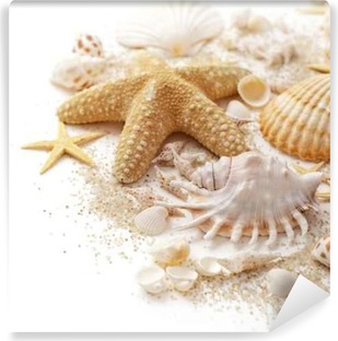 seashells and sand on white background Vinyl Wall Mural
