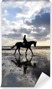 Silhouette of a Horse Rider Walking on Beach Vinyl Wall Mural