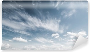 Sky and clouds atmosphere background Vinyl Wall Mural