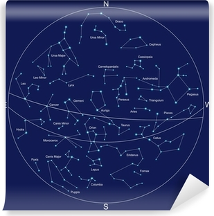 Constellations Wall Murals Pixers - Constellation wall map