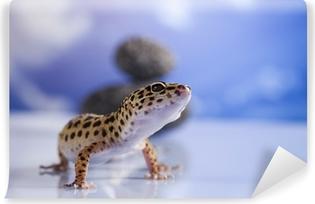 Small gecko reptile lizard Vinyl Wall Mural