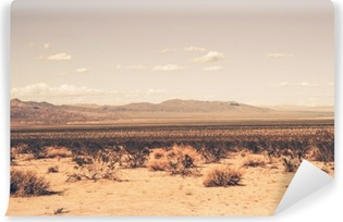 Southern California Desert Vinyl Wall Mural