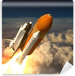 Space shuttle Wall Mural Pixers We live to change