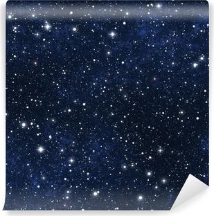 star filled night sky Vinyl Wall Mural