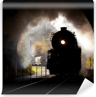Steam locomotive enters tunnel Vinyl Wall Mural