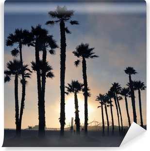 Sunset and palm trees, Santa Monica beach, Los Angeles, USA Vinyl Wall Mural
