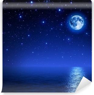 super moon in starry sky on sea Vinyl Wall Mural