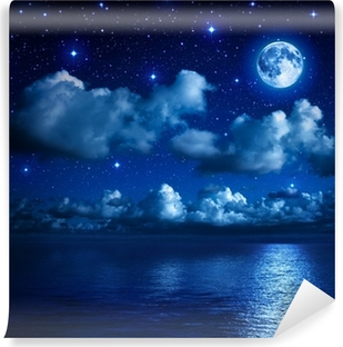 super moon in starry sky with clouds and sea Vinyl Wall Mural