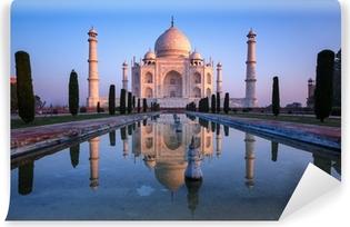 Taj Mahal Vinyl Wall Mural