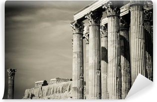 Temple of Olympian Zeus and Acropolis, Athens Vinyl Wall Mural
