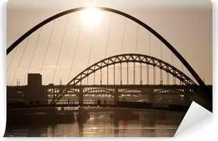 The Millenium and Tyne Bridges. Newcastle Upon Tyne. Vinyl Wall Mural