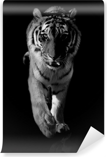 tiger black and white Vinyl Wall Mural