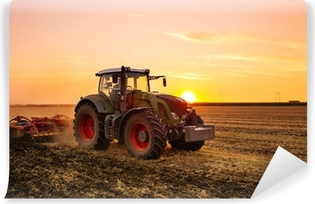 Tractor on the barley field by sunset. Vinyl Wall Mural