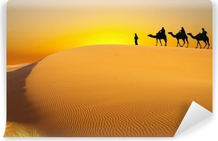 Travel with camel Vinyl Wall Mural