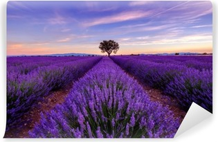 Tree in lavender field at sunrise in Provence, France Vinyl Wall Mural