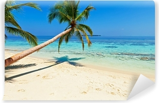 Tropical beach Wall Mural Pixers We live to change