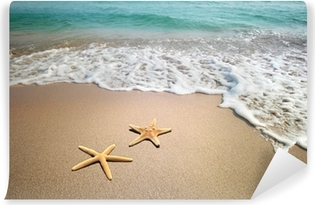 two starfish on a beach Vinyl Wall Mural
