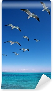 Various seagulls flying over a blue sea Vinyl Wall Mural